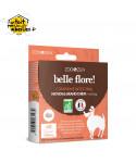 Boîte de 10 comprimés intestinaux - Moyen & grand chien (+ de 15 kg) - BIO Ecocert